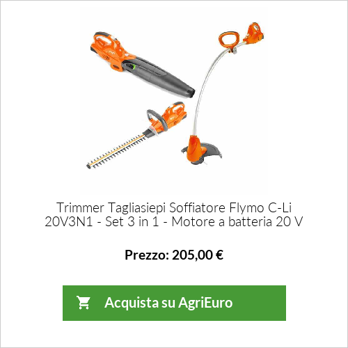 Trimmer Tagliasiepi Soffiatore Flymo C-Li 20V3N1 - Set 3 in 1 - Motore a batteria 20 V